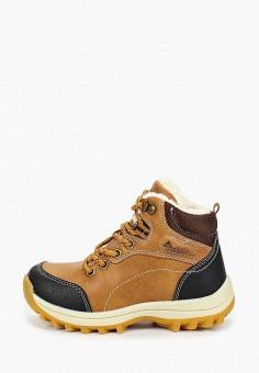 Ботинки, Patrol, цвет: коричневый. Артикул: PA050ABGJLR4.