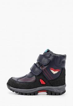 Ботинки, Patrol, цвет: синий. Артикул: PA050ABGJLS1.