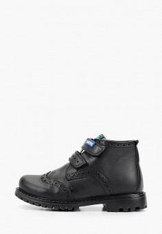 Ботинки, Patrol, цвет: черный. Артикул: PA050ABGJLS2.
