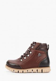 Ботинки, Patrol, цвет: коричневый. Артикул: PA050ABGJLS6.
