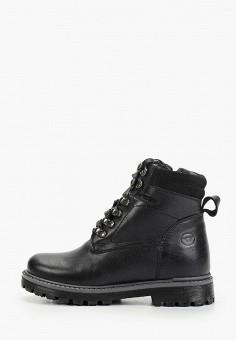 Ботинки, Patrol, цвет: черный. Артикул: PA050ABGJLT9.
