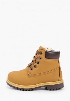 Ботинки, Patrol, цвет: коричневый. Артикул: PA050ABHEEM3.