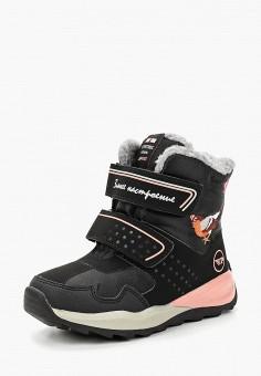 Ботинки, Patrol, цвет: черный. Артикул: PA050AGCHQC7.