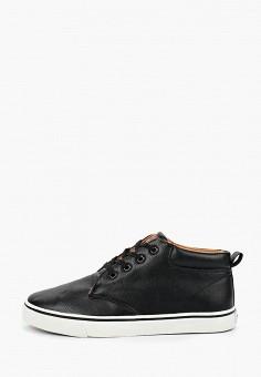 Ботинки, Patrol, цвет: черный. Артикул: PA050AMGIBT7. Обувь / Ботинки / Низкие ботинки