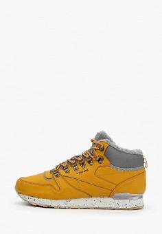 Кроссовки, Patrol, цвет: коричневый. Артикул: PA050AMGIFJ2.