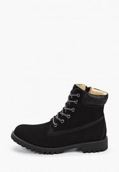 Ботинки, Patrol, цвет: черный. Артикул: PA050AWGJRE7. Обувь / Ботинки / Высокие ботинки