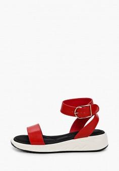Сандалии, Patrol, цвет: красный. Артикул: PA050AWIOIC6. Обувь / Сандалии