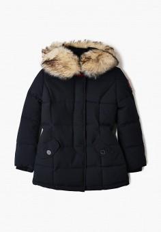 Куртка утепленная, Paragoose, цвет: синий. Артикул: PA068EBHDDD9. Мальчикам / Одежда / Верхняя одежда / Куртки и пуховики