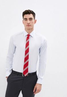 Рубашка, Pal Zileri, цвет: голубой. Артикул: PA413EMJYNG1. Одежда / Рубашки / Рубашки с длинным рукавом