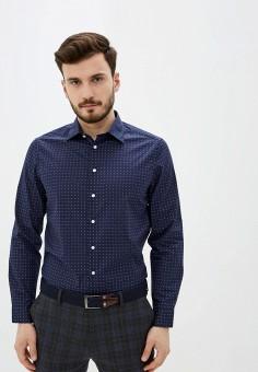 Рубашка, Piazza Italia, цвет: синий. Артикул: PI022EMIGSO7.