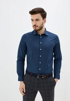 Рубашка, Piazza Italia, цвет: синий. Артикул: PI022EMIGSP1.