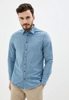 Рубашка джинсовая, Piazza Italia, цвет: голубой. Артикул: PI022EMJIBM8.