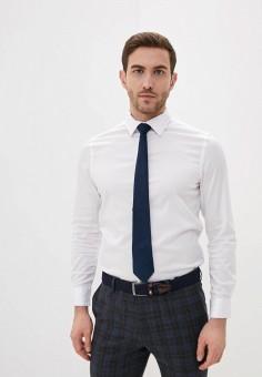 Рубашка, Piazza Italia, цвет: белый. Артикул: PI022EMJIBM9.