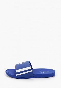 Сланцы, Polo Ralph Lauren, цвет: синий. Артикул: PO006ABIVCY3.