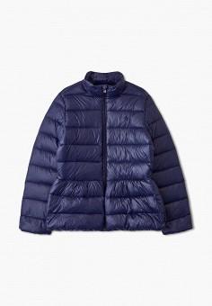 Пуховик, Polo Ralph Lauren, цвет: синий. Артикул: PO006EGFNHA5. Девочкам / Одежда / Верхняя одежда / Куртки и пуховики