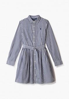 Платье, Polo Ralph Lauren, цвет: синий. Артикул: PO006EGJRID9.