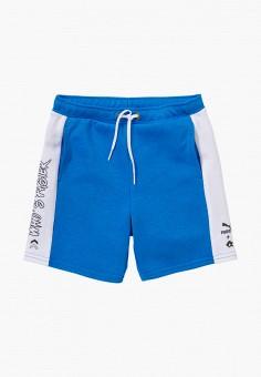 Шорты спортивные, PUMA, цвет: синий. Артикул: PU053EBIHLC0.