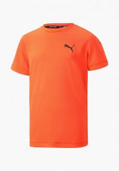 Футболка спортивная, PUMA, цвет: оранжевый. Артикул: PU053EBIHLE0.
