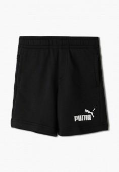 Шорты, PUMA, цвет: черный. Артикул: PU053EBIHNM3.