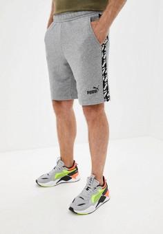 Шорты спортивные, PUMA, цвет: серый. Артикул: PU053EMJTIO2. Одежда / Шорты
