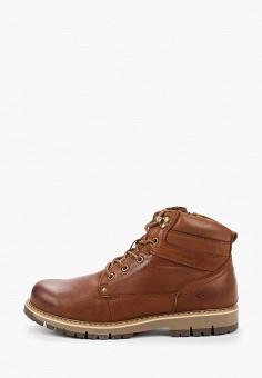 Ботинки, Quattrocomforto, цвет: коричневый. Артикул: QU003AMFYBU2. Обувь / Ботинки / Высокие ботинки