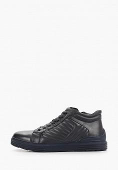 Ботинки, Quattrocomforto, цвет: черный. Артикул: QU003AMFYBU5. Обувь / Ботинки / Высокие ботинки