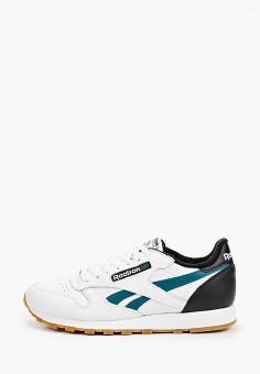 Кроссовки, Reebok Classic, цвет: белый. Артикул: RE005AMHWCT3.