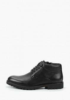 Ботинки, Roscote, цвет: черный. Артикул: RO051AMGUSN8. Обувь / Ботинки / Низкие ботинки