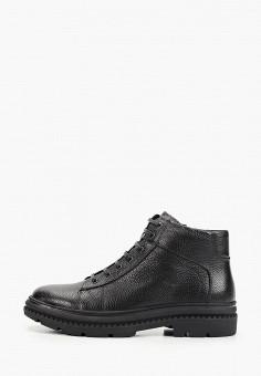 Ботинки, Roscote, цвет: черный. Артикул: RO051AMGUSO5. Обувь / Ботинки