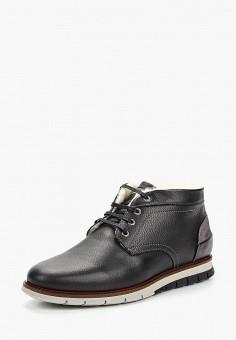 Ботинки, Salamander, цвет: черный. Артикул: SA815AMCLPH7.