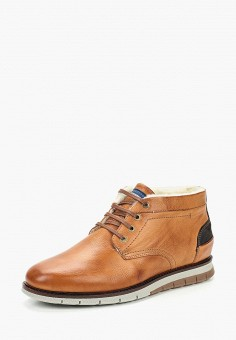 Ботинки, Salamander, цвет: коричневый. Артикул: SA815AMCLPH8.