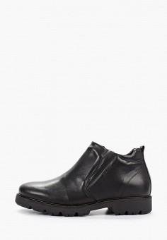 Ботинки, Salamander, цвет: черный. Артикул: SA815AMGIBM7. Обувь / Ботинки / Высокие ботинки