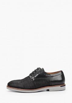 Туфли, Salamander, цвет: черный. Артикул: SA815AMHLYA3.