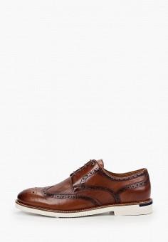 Туфли, Salamander, цвет: коричневый. Артикул: SA815AMHLYA5.