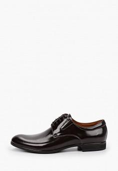 Туфли, Salamander, цвет: коричневый. Артикул: SA815AMHLYC9.
