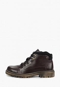 Ботинки, Shoiberg, цвет: коричневый. Артикул: SH003AMFZSY6. Обувь / Ботинки / Высокие ботинки