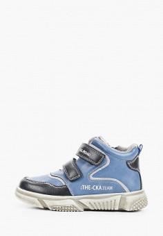 Ботинки, Сказка, цвет: синий. Артикул: SK011ABIWSK4. Мальчикам / Обувь / Ботинки