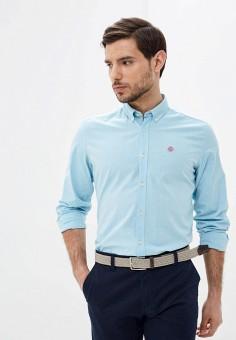 Рубашка, Springfield, цвет: голубой. Артикул: SP014EMHVHB4.