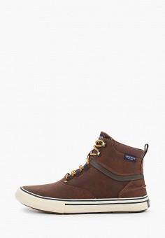 Кеды, Sperry Top-Sider, цвет: коричневый. Артикул: SP016AMGGUS8. Обувь / Кроссовки и кеды