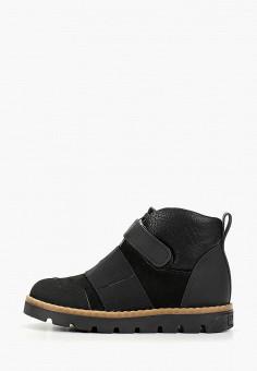 Ботинки, Tapiboo, цвет: черный. Артикул: TA036ABFSAC1. Мальчикам / Обувь / Ботинки