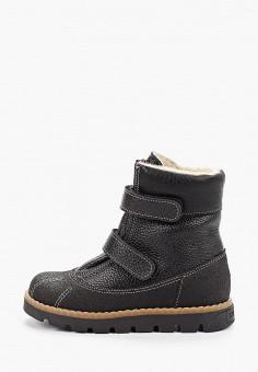 Ботинки, Tapiboo, цвет: черный. Артикул: TA036ABGHNF6. Мальчикам / Обувь / Ботинки