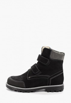 Ботинки, Tapiboo, цвет: черный. Артикул: TA036ABGHNG1. Мальчикам / Обувь / Ботинки