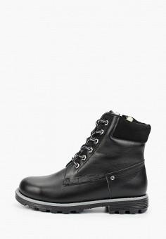 Ботинки, Tapiboo, цвет: черный. Артикул: TA036ABGHNG8. Мальчикам / Обувь / Ботинки