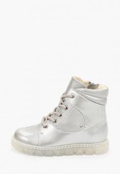 Ботинки, Tapiboo, цвет: серебряный. Артикул: TA036AGJPGU9. Девочкам / Обувь
