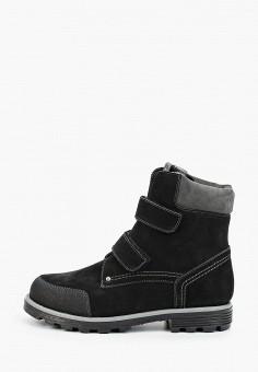 Ботинки, Tapiboo, цвет: черный. Артикул: TA036AKFSAF5. Мальчикам / Обувь / Ботинки