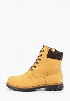 Ботинки, Tapiboo, цвет: бежевый. Артикул: TA036AKGHNG9. Мальчикам / Обувь / Ботинки
