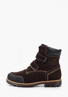 Ботинки, Tapiboo, цвет: коричневый. Артикул: TA036AKJPGW2. Мальчикам / Обувь / Ботинки