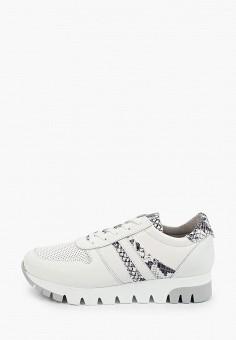 Кроссовки, Tamaris, цвет: белый. Артикул: TA171AWIKAI5.