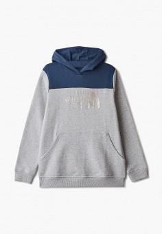Худи, The North Face, цвет: серый. Артикул: TH016EGISXS1.