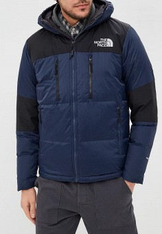 Пуховик, The North Face, цвет: синий. Артикул: TH016EMDQMF4. The North Face